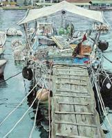 中原 奈津美「漁船といっしょ」